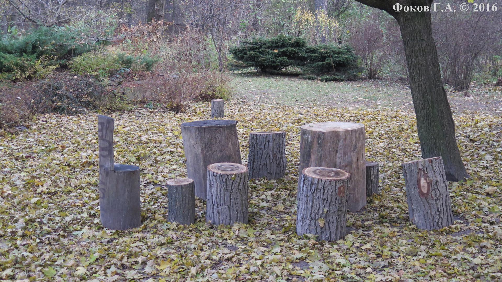 Пеньки-столики и пеньки-стулья в Сырецком дендропарке