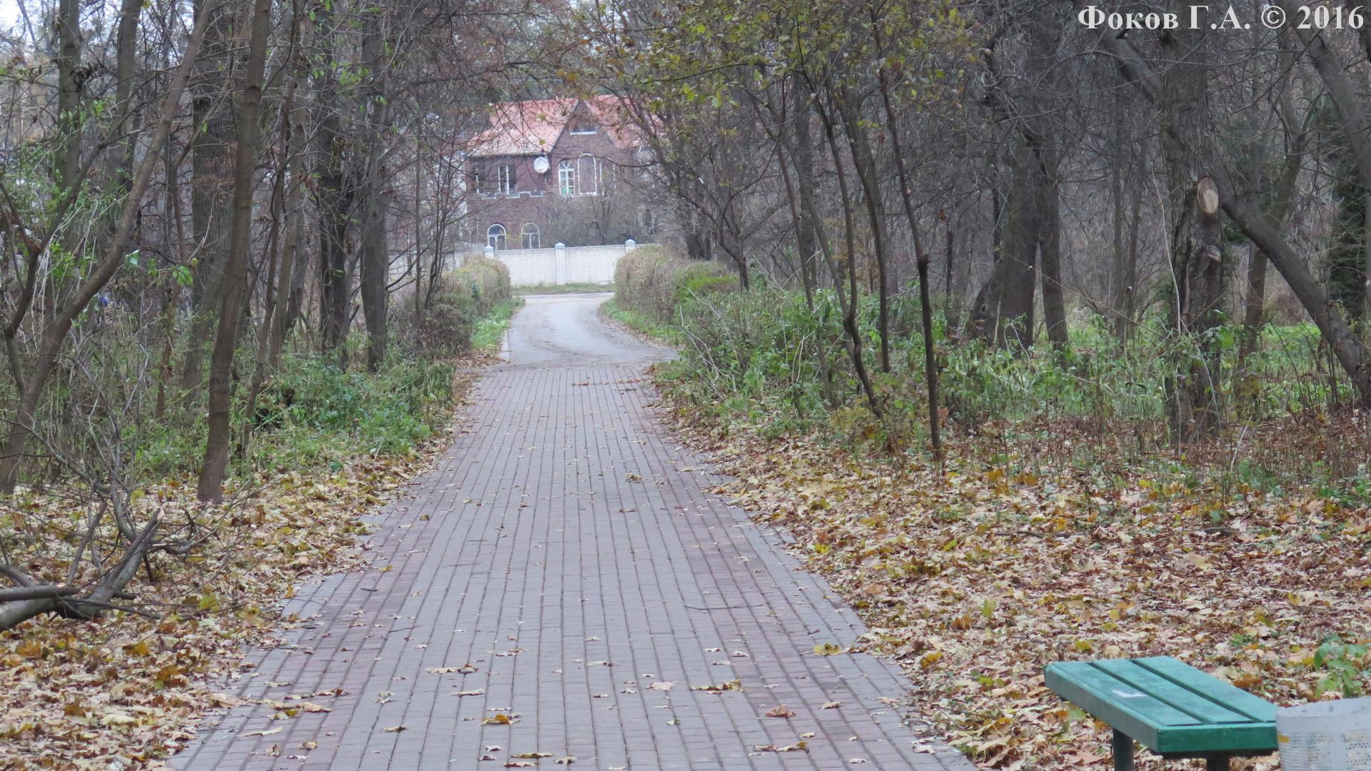 Аллея, ведущая к улице, на которой Сырецкий дендропарк