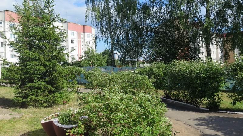 Двор в агрогородке Петришки, Беларусь