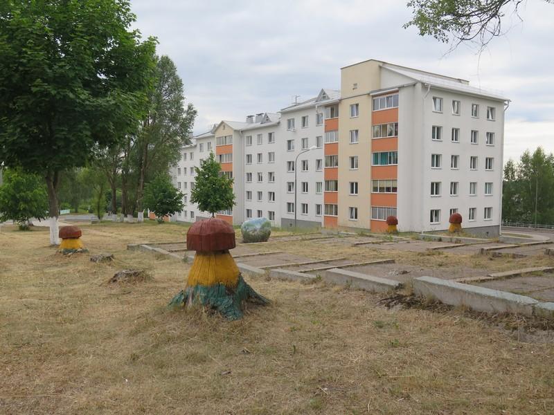 Петришки, Минский район, дом по ул. Гагарина, 12