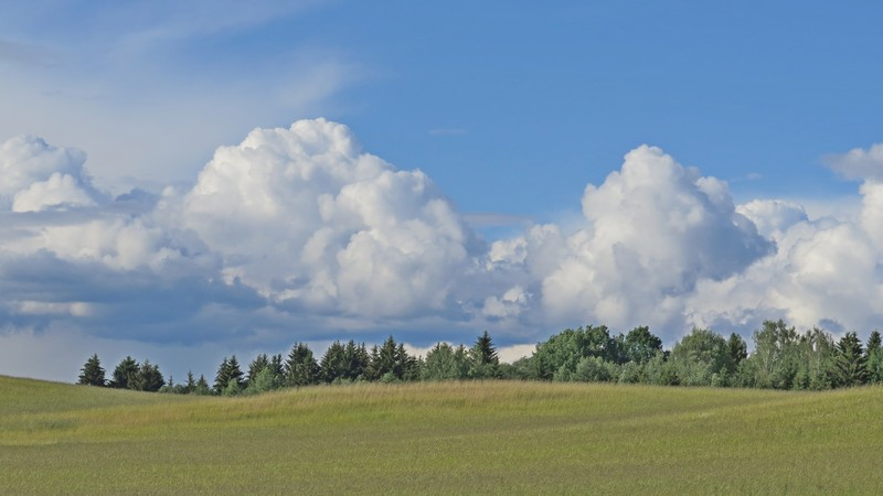 Облака над лесом, северная окраина агрогородка Петришки