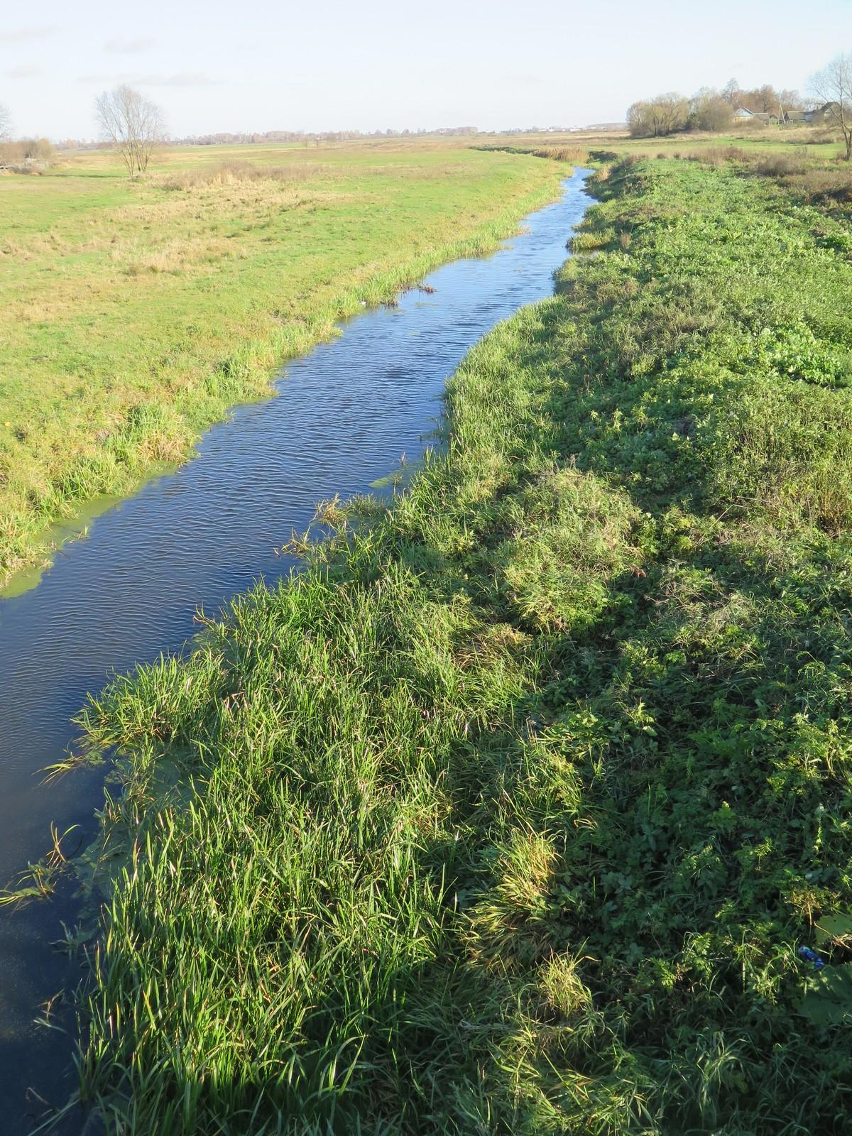 река Ржавка, Рогачевский район