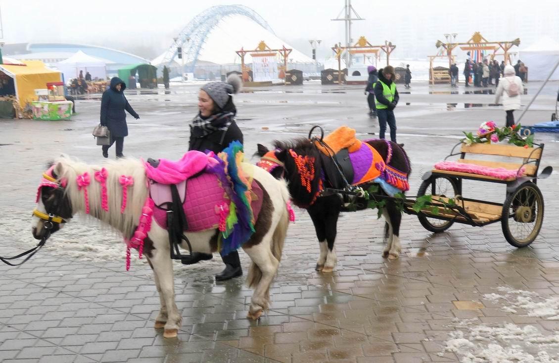 Масленица, лошадки, Минск